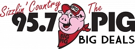 Big Pig's Big Deals Logo